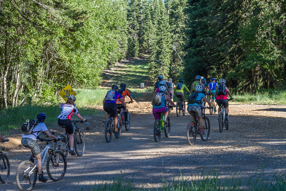 freeplay mountain bike escapes tahoe