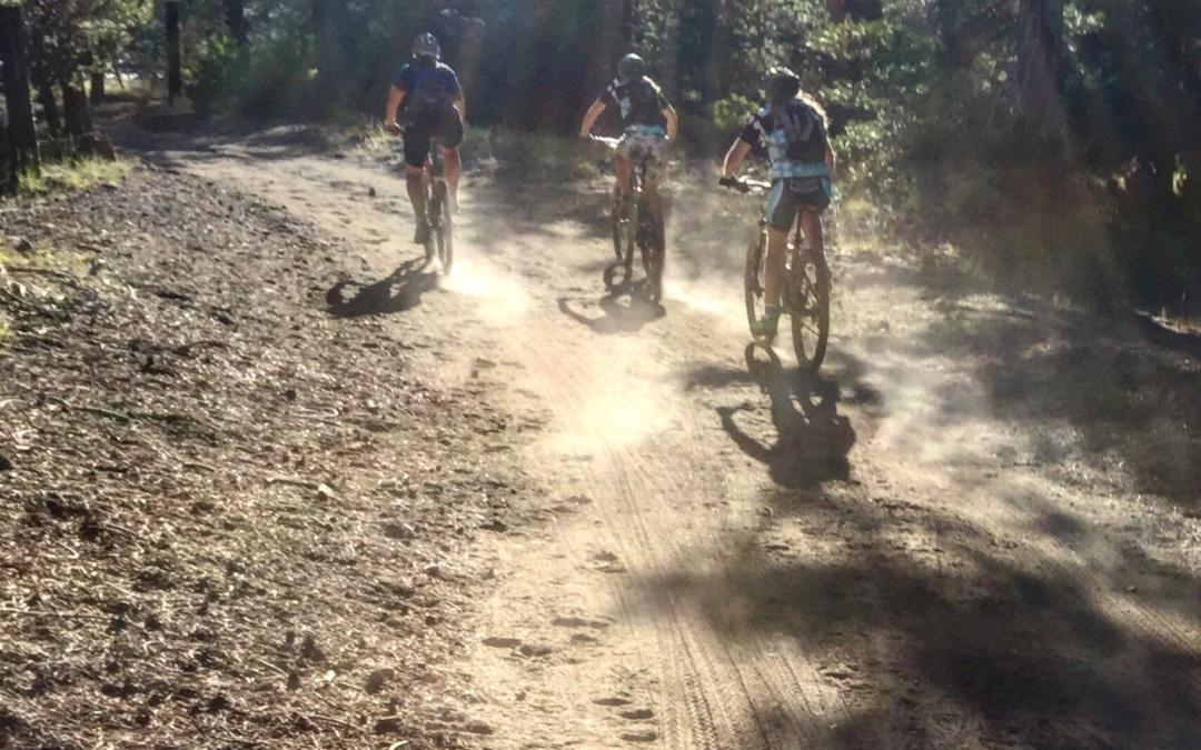 Freeplay Announces New Women's Mountain Bike Program